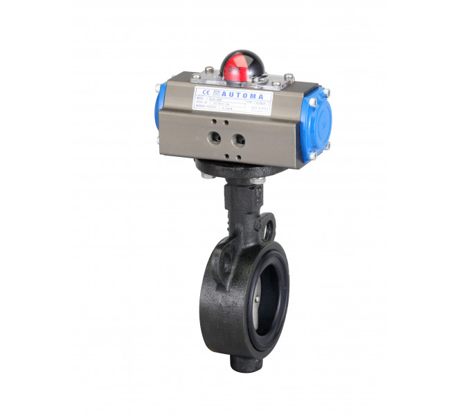 Butterfly Valve (Double Type)
