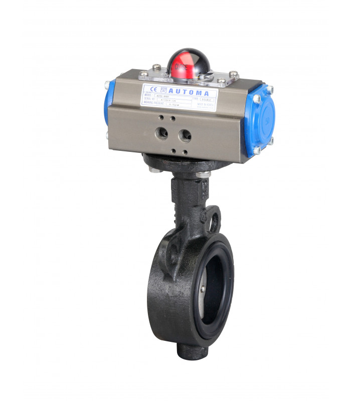 Automa Butterfly Valve Double Type