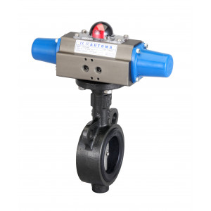 Butterfly Valve (Single Type)